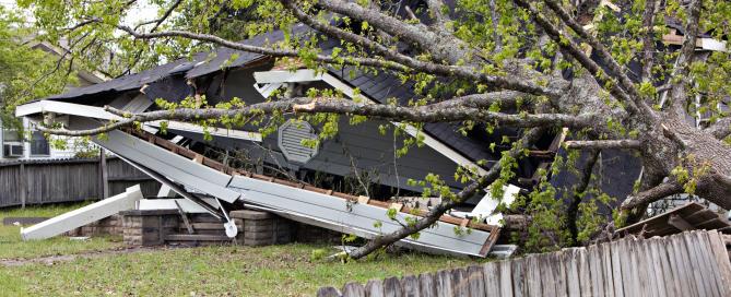 Homeowners Tree Damage